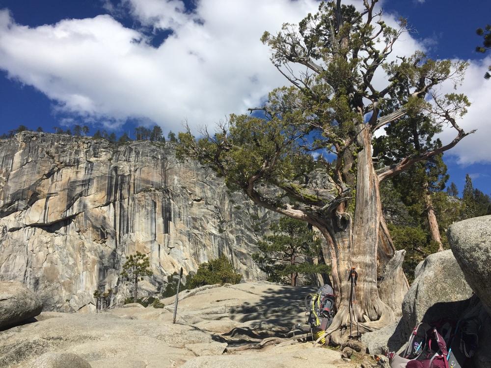 Upper Yosemite Falls Overlook
