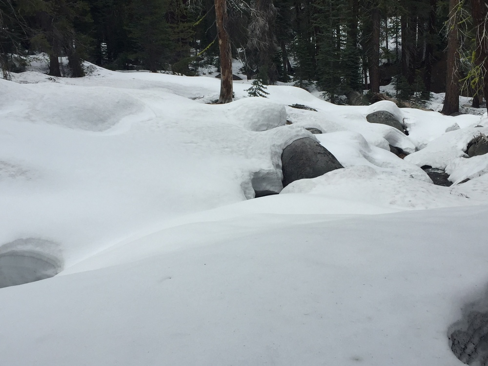 Deep, soft snow over big rocks and downed logs along the upper Snow Creek drainage