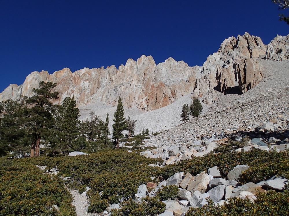 Taboose Pass Pine Plateau