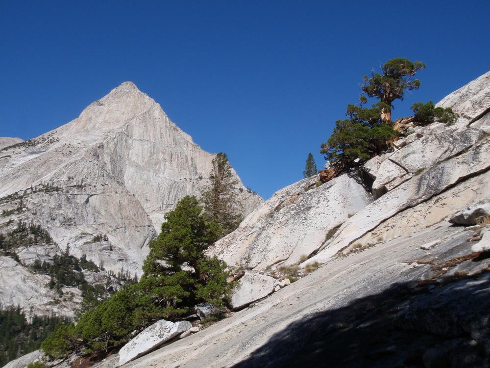 Langille Peak and western juniper