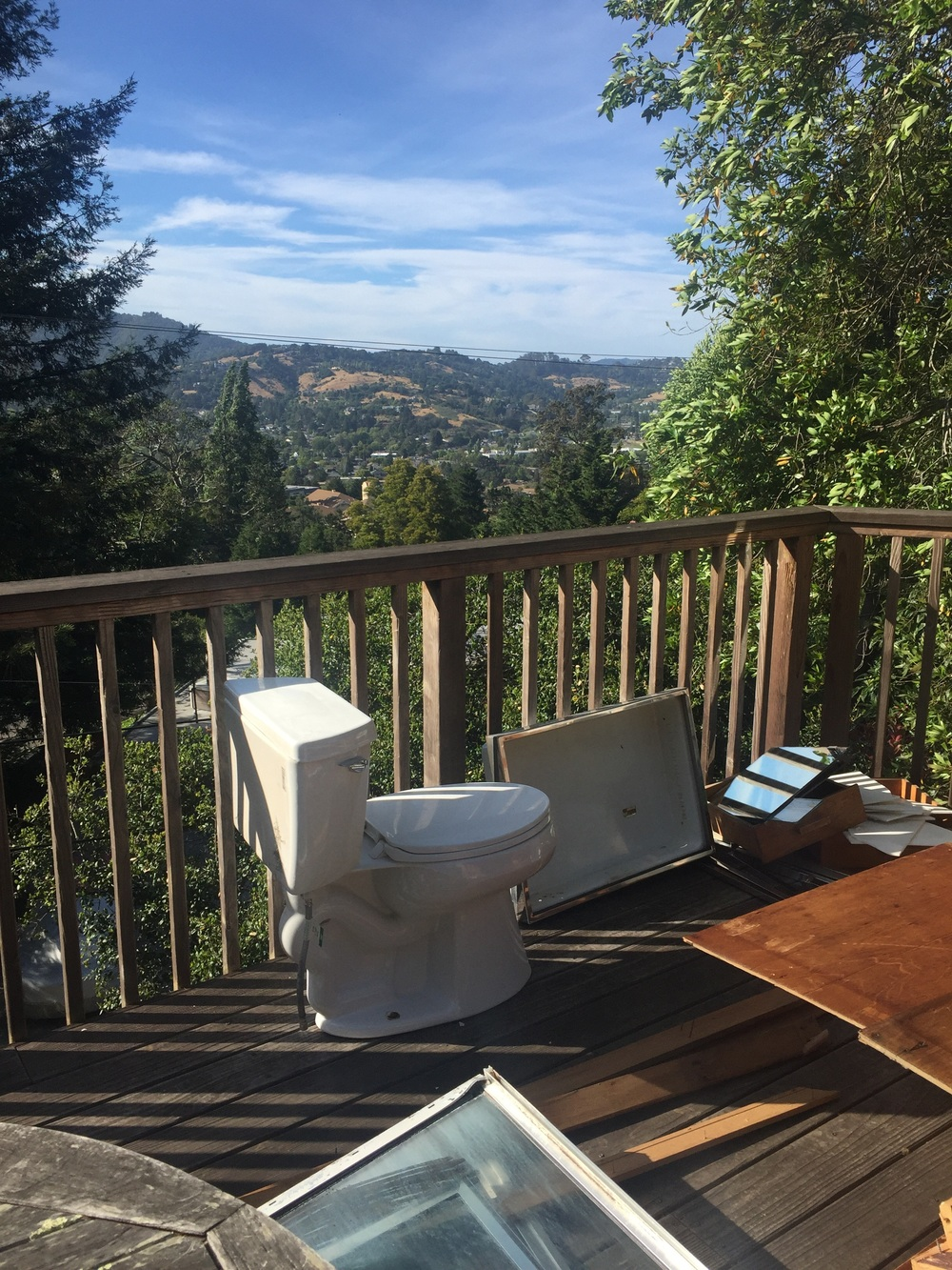 Bathroom with a view? Or remodel in progress.