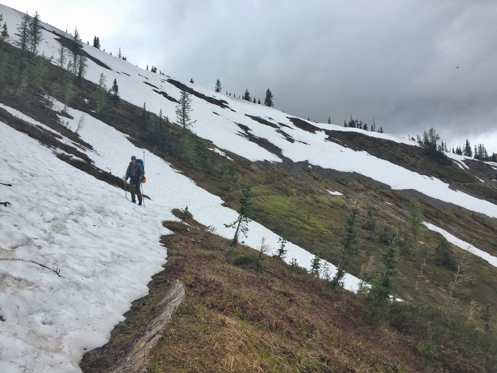 Snow near Woody Pass on the PCT