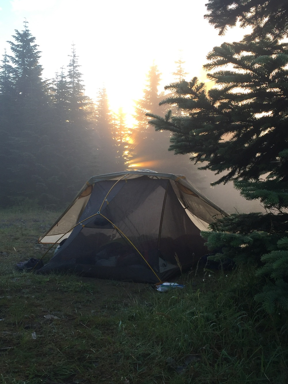 Our tent hangs out in the most beautiful places, and even makes an abandoned road look pretty