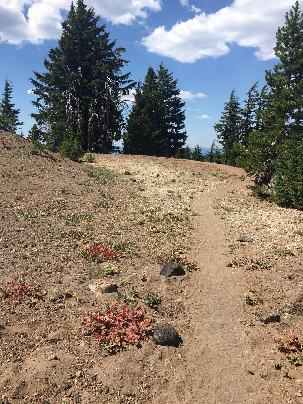 High, dry terrain (& more pumice!) on the northern approach to Crater Lake via the Rim Alternate Trail