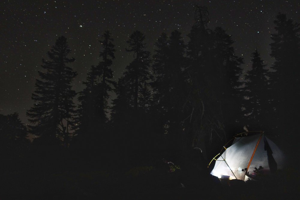 Huckleberry writing her journal against surrounded by trees and stars.