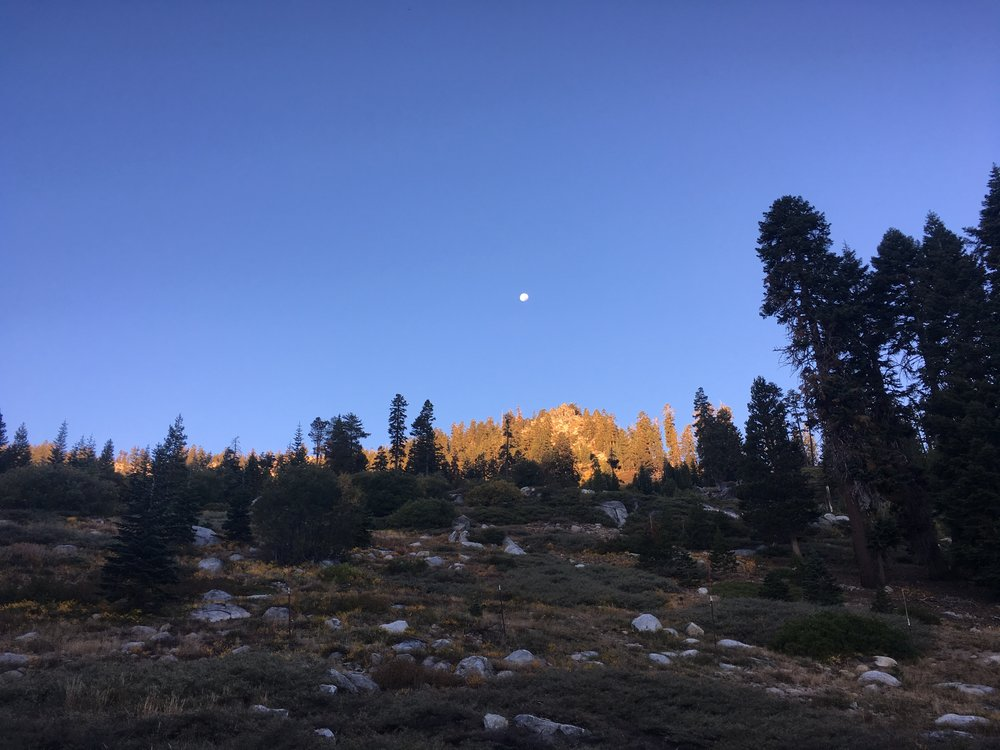 Morning light near Echo Summit with a nearly full moon.