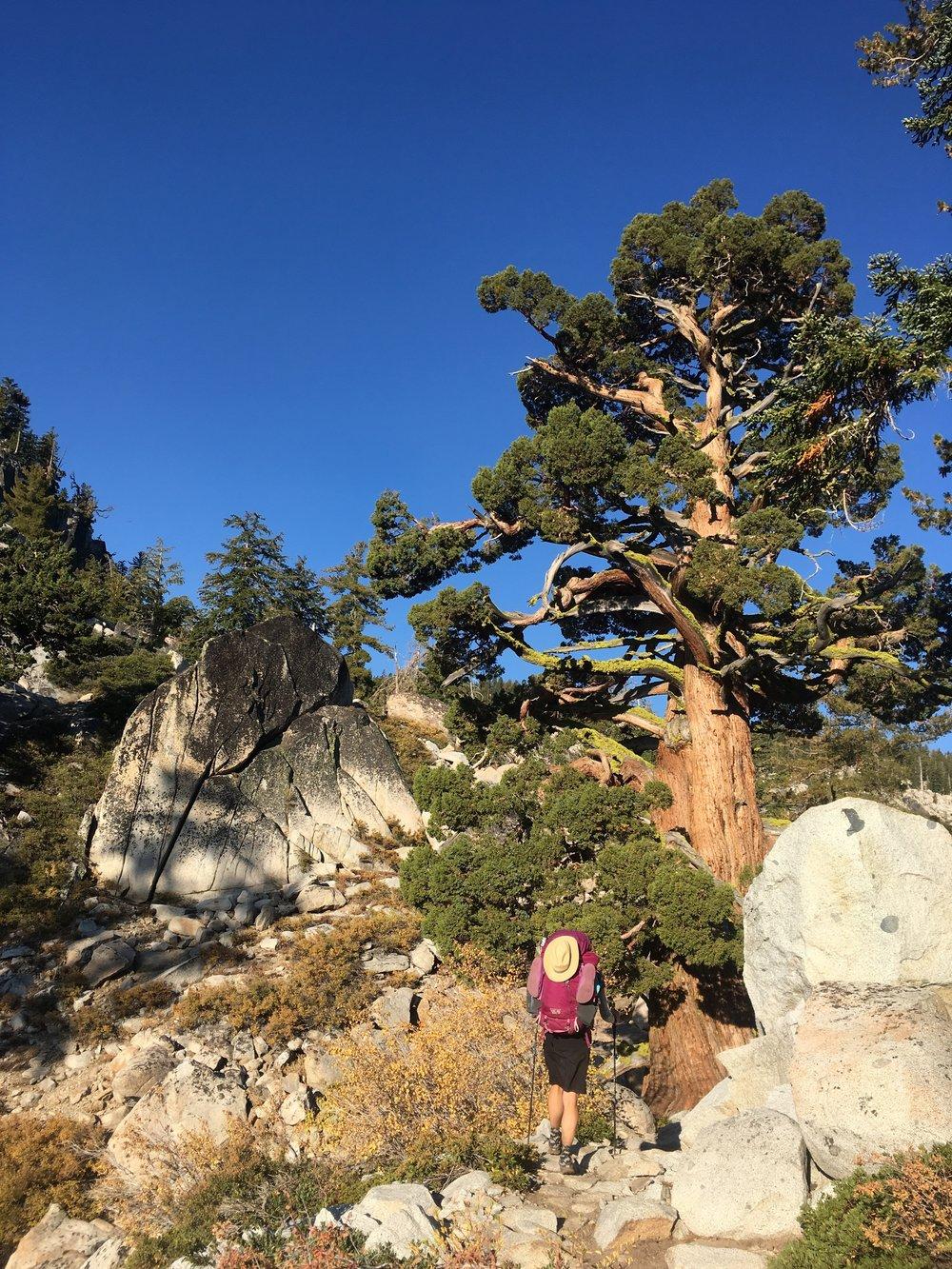 Leaving Tahoe and its granite.