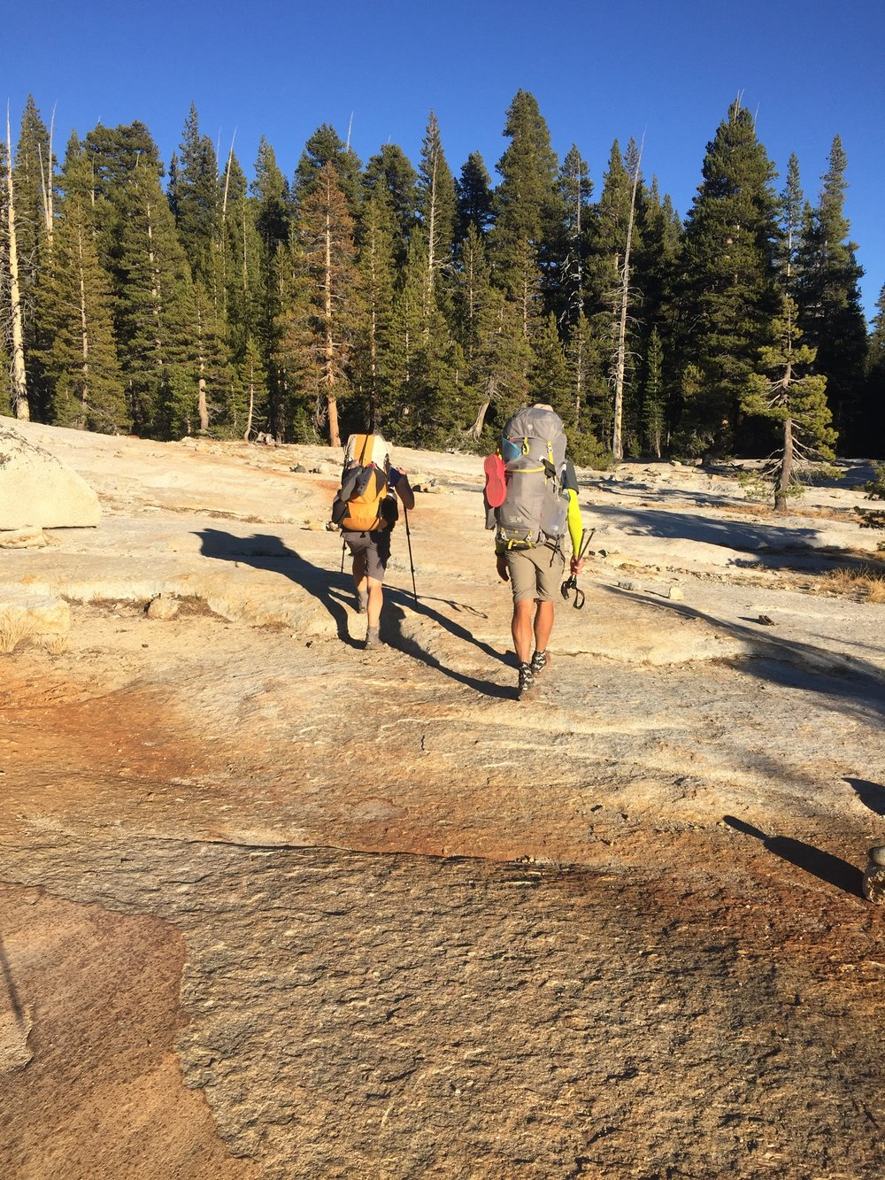 So much granite as we near Tuolumne Meadows in the late afternoon (Cookie & Macro)