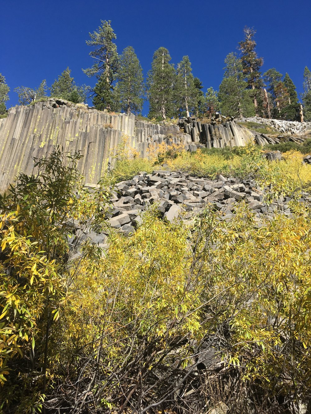 Devil's Postpile. So glad this wasn't blasted to make a dam 100 years ago as was once planned.