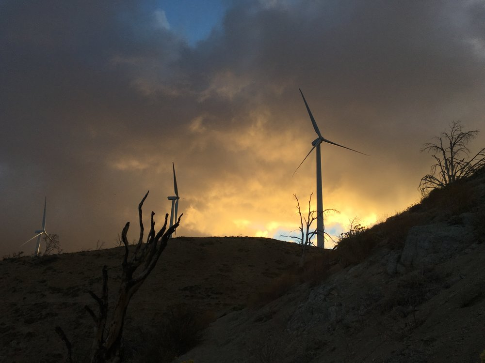 Early morning light on the fog above the wind turbines.