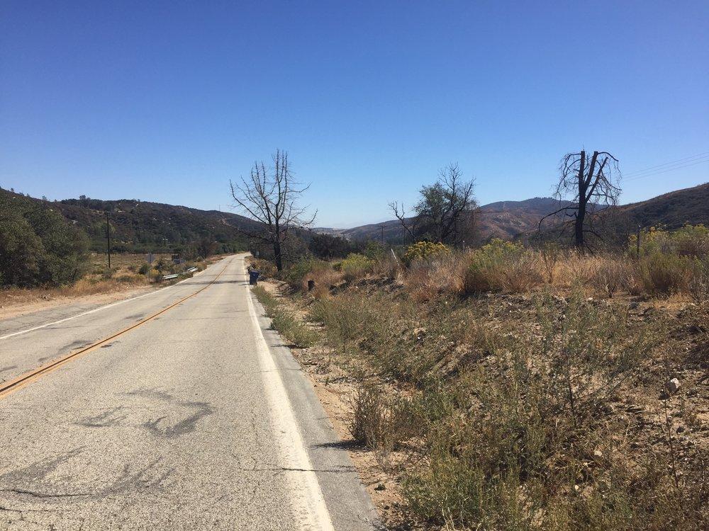Road walk! The Powerhouse Fire detour takes us along Pine Canyon Road.