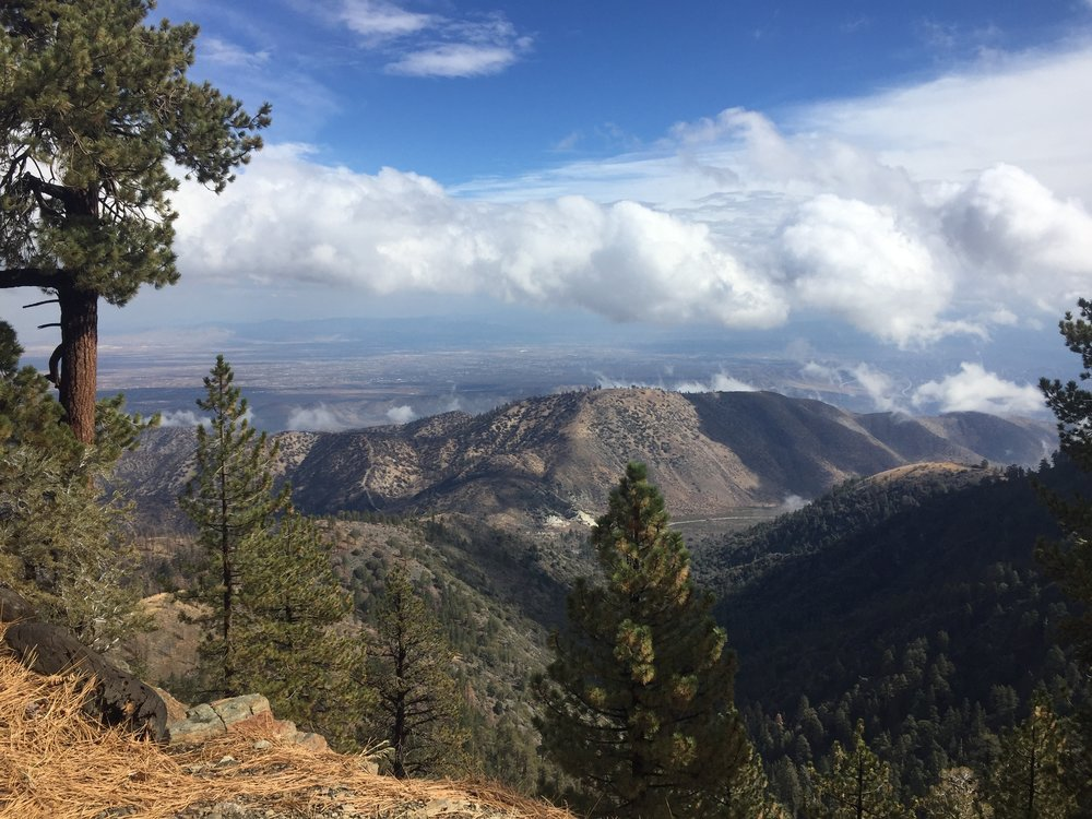 Views north from Blue Ridge
