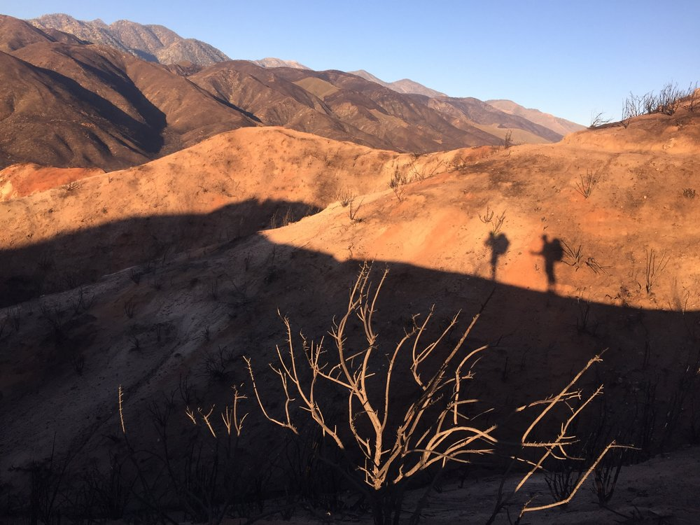 Morning light on the Ralston Peak traverse, looking south towards the San Gabriel Mountains