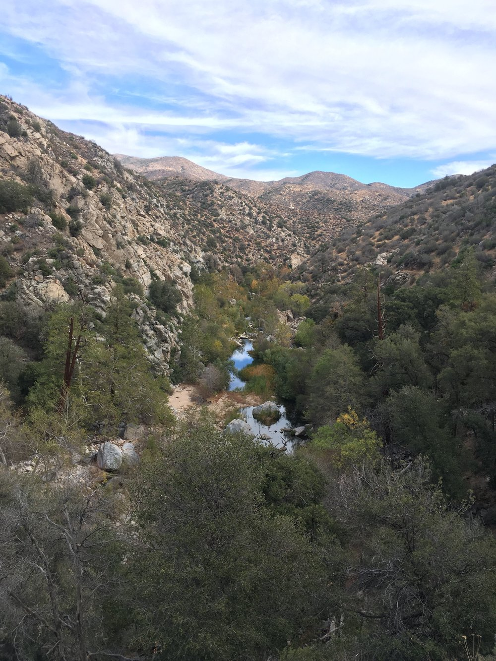 Deep Creek Canyon, an oasis in the Transverse Ranges of the desert.