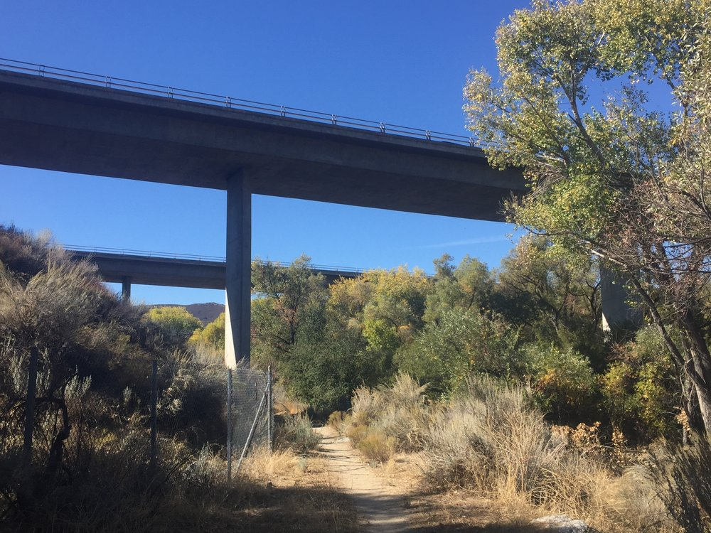 The PCT passes under I-8 alongside sage and mature Cottonwood trees