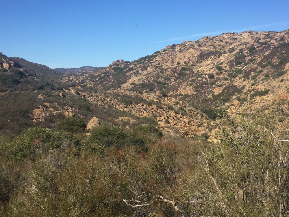 You'd never know a busy interstate freeway is just around the corner from this view along the Kitchen Creek drainage