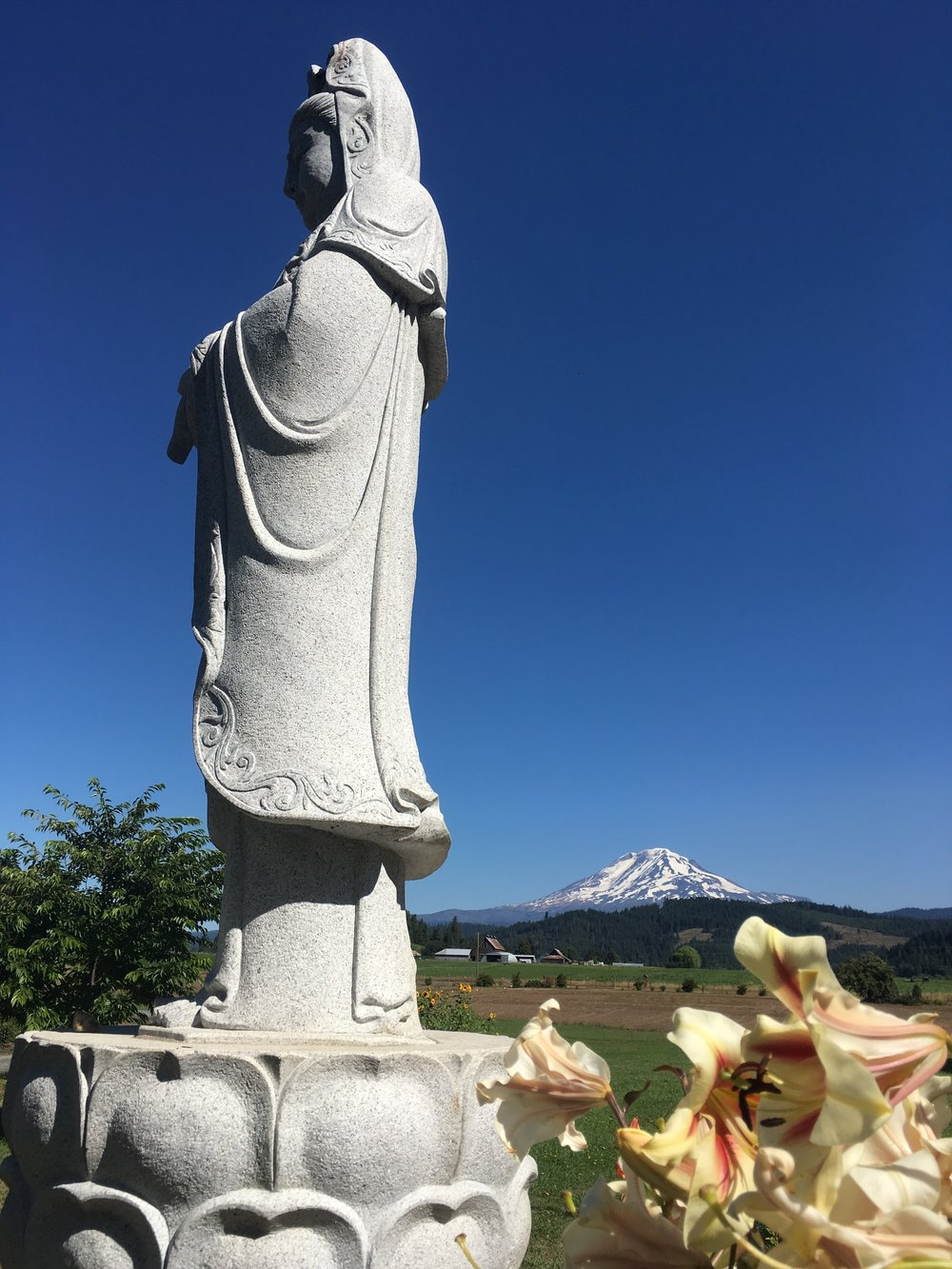 PCT Day 27 Statue and Mt Adams at Trout Lake Abbey am.JPG