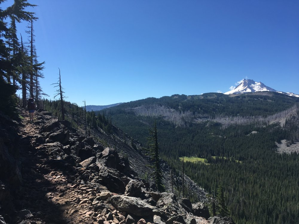 PCT Day 35- C on the PCT heading to Mt Jefferson.JPG