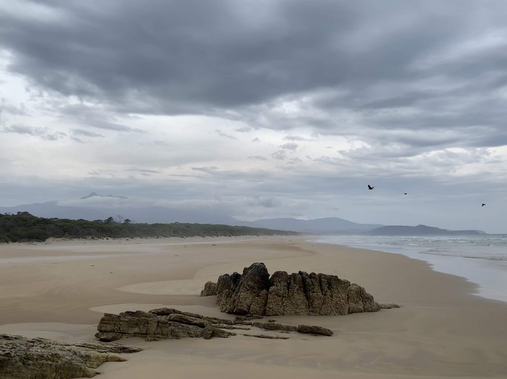 South Coast Track (Tasmania) | March 2019
