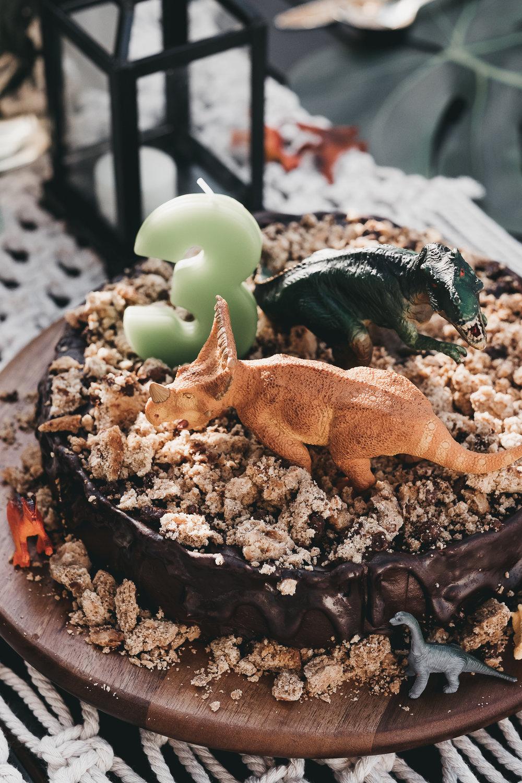 bradens third dinosaur birthday-43.jpg
