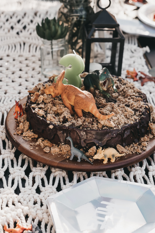 bradens third dinosaur birthday-47.jpg
