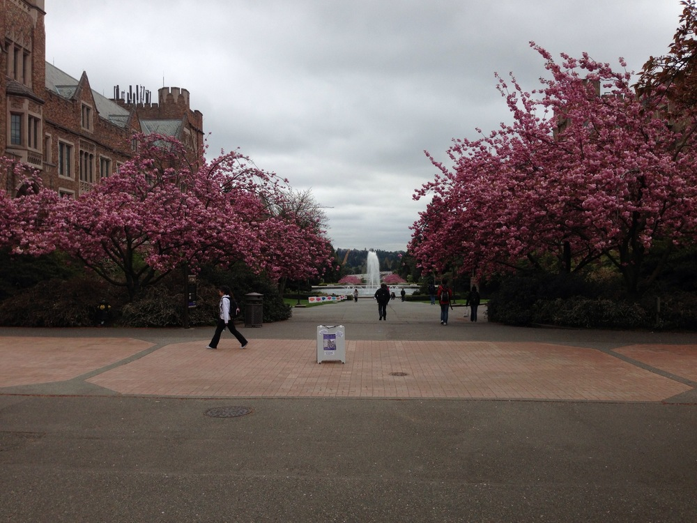 UWashington029.jpg