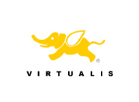 virtualis2.jpg
