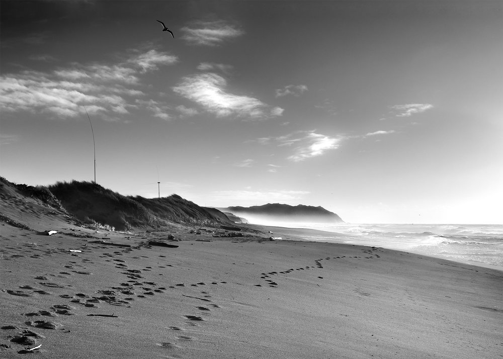 Punta-Reyes-Beach.jpg