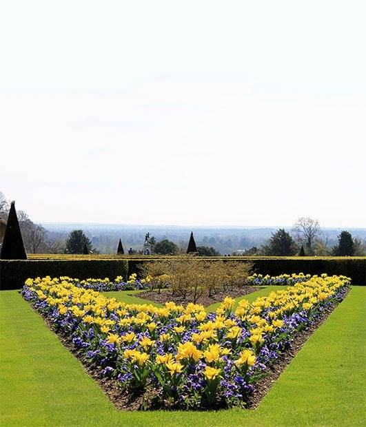 cliveden-parterre-in-the-spring-photo-credit-national-trust.jpg