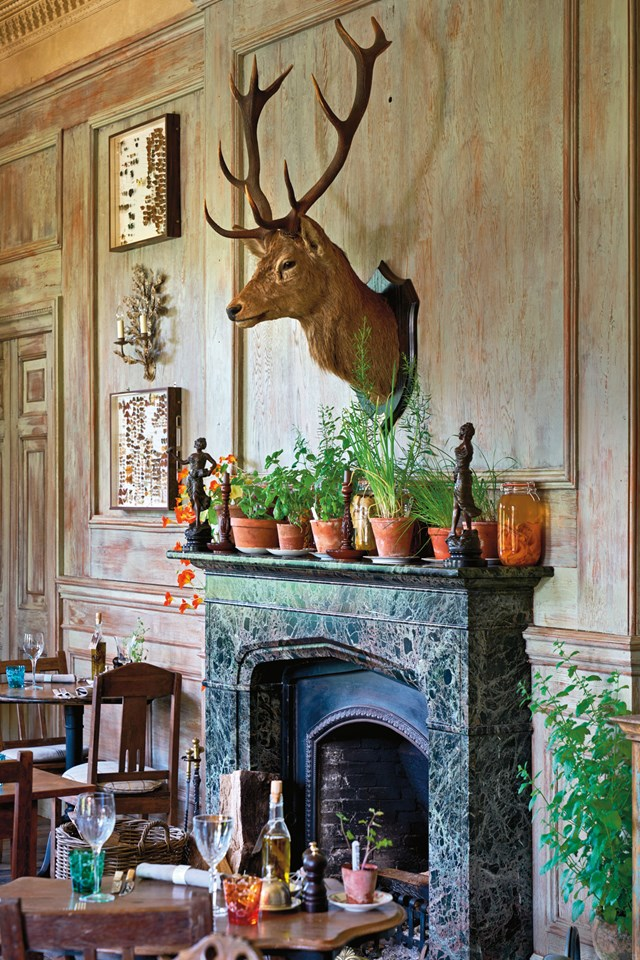 stags-head-in-dining-room-at-the-pig-at-combe-hotel-devon-conde-nast-traveller-18oct16-james-merrell_640x960.jpg