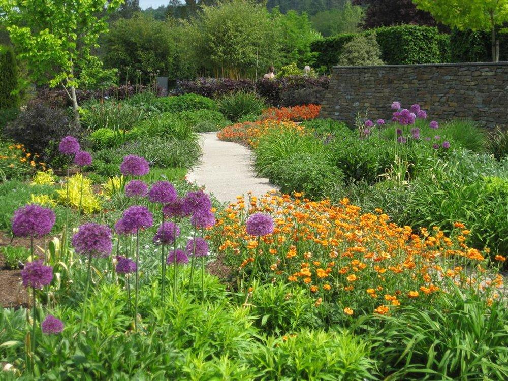 Rosemoor hot garden 3 (Large).jpg