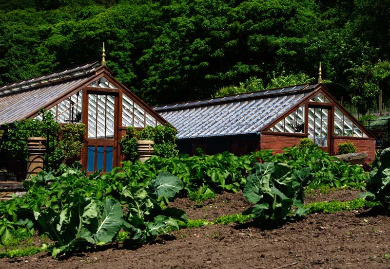 Greenhouses-Kitchen-Garden-Chatsworth-7.jpg