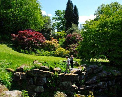 Paxtons-Rock-Garden-Chatsworth-14Main.jpg