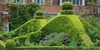 Lady-Salisburys-private-garden-at-Hatfield-House-1.jpg