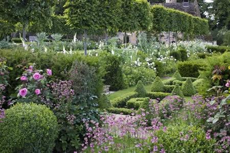 6cfd29041931f3f67c7d0d8824bbf648--cottage-garden-dream-garden.jpg
