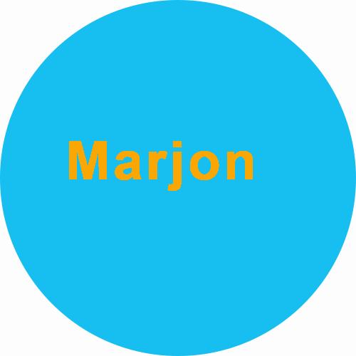 Marjon Smink