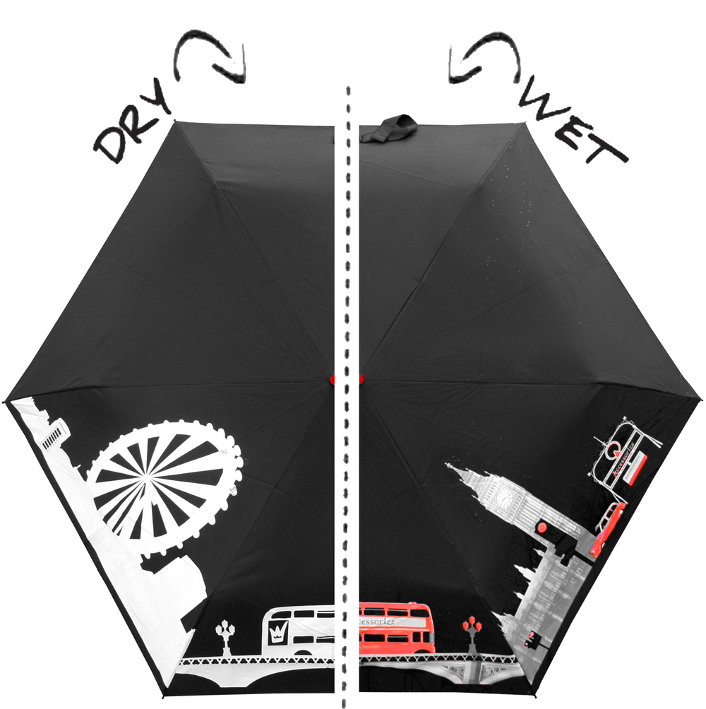 Accessoriye_umbrella_drywet.jpg