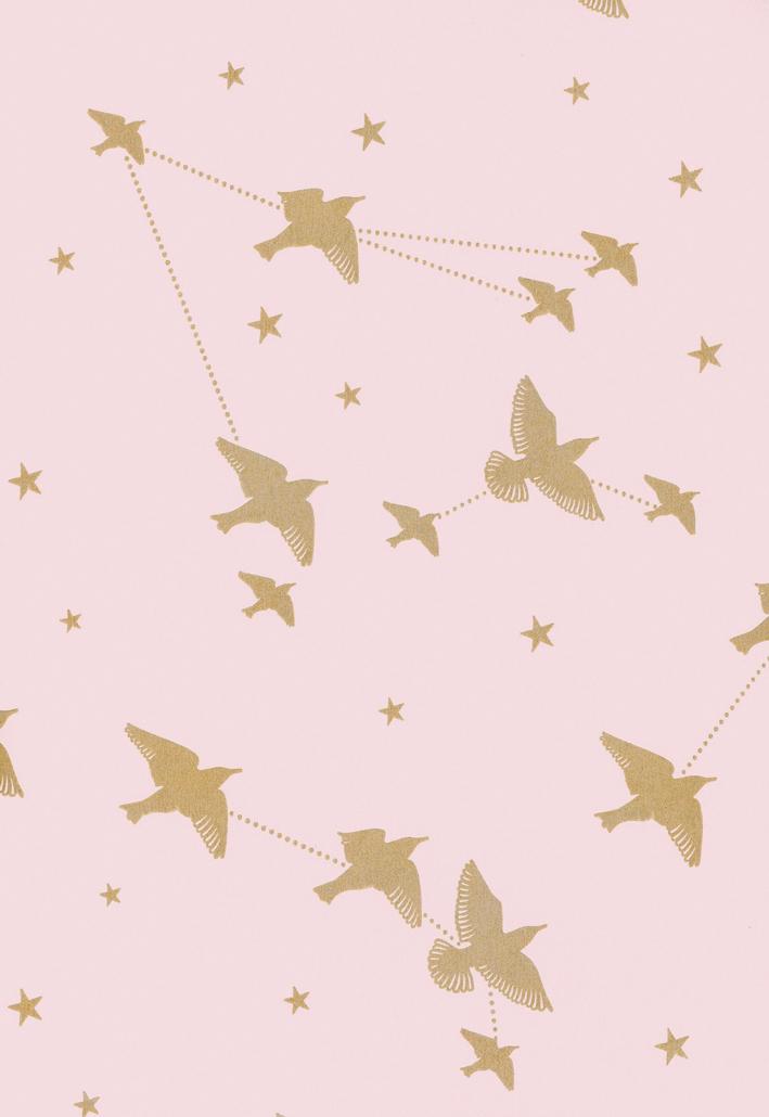 starlingrosemarais23.jpg