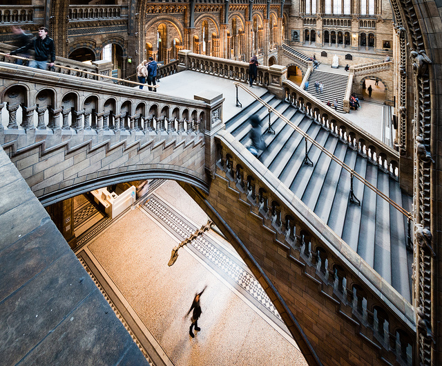 Dippy heads out of the NHM to start a national tour.  Image: Barney Moss, CC-BY-2.0, Flickr