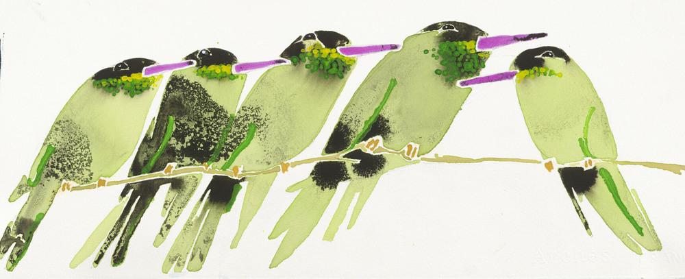 HUMMINGBIRDS Green cp.jpg