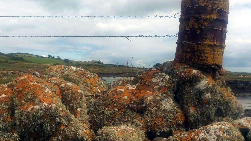 Rebecca Denley - Cooey's Wells & Penance Stone