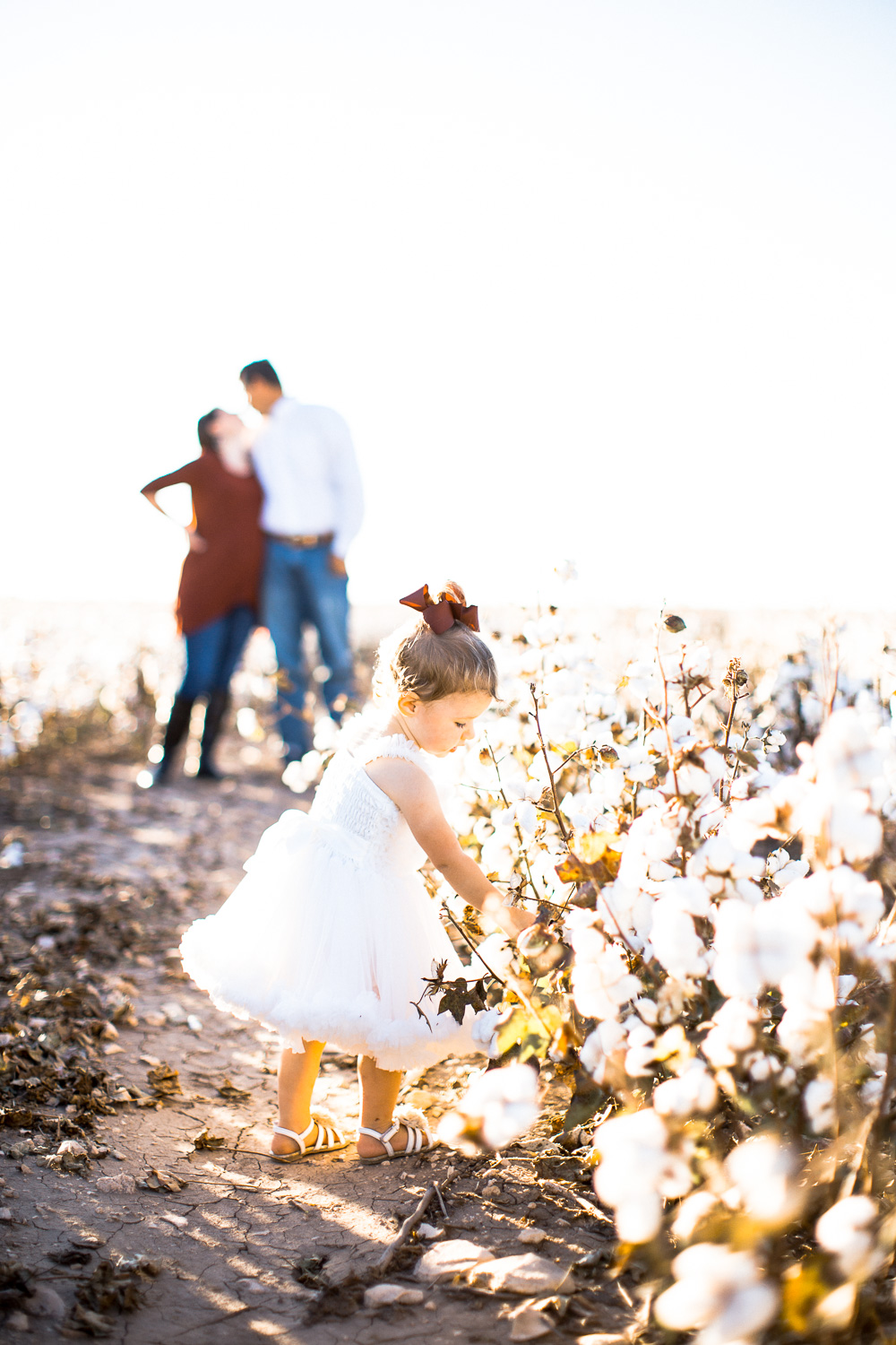 San-Angelo-Family-in-Cotton-16.jpg