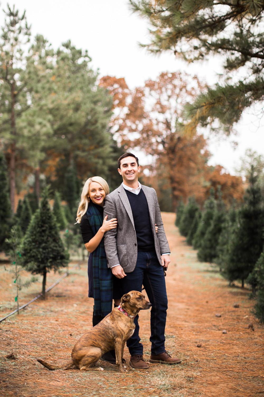 Sorghum-Mill-Christmas-Tree-Farm-Edmond-4.jpg