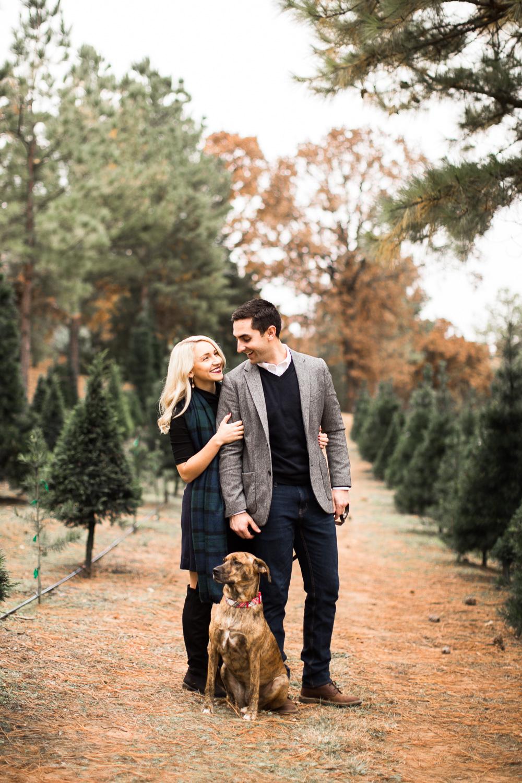Sorghum-Mill-Christmas-Tree-Farm-Edmond-5.jpg
