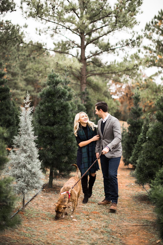Sorghum-Mill-Christmas-Tree-Farm-Edmond-7.jpg