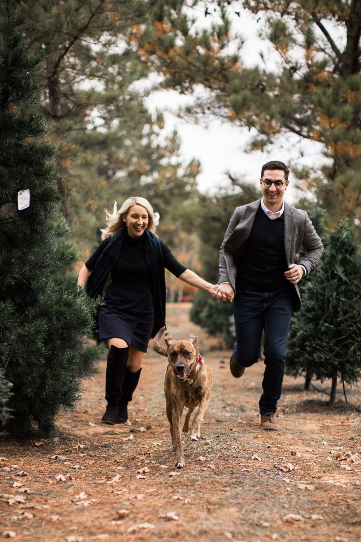 Sorghum-Mill-Christmas-Tree-Farm-Edmond-8.jpg