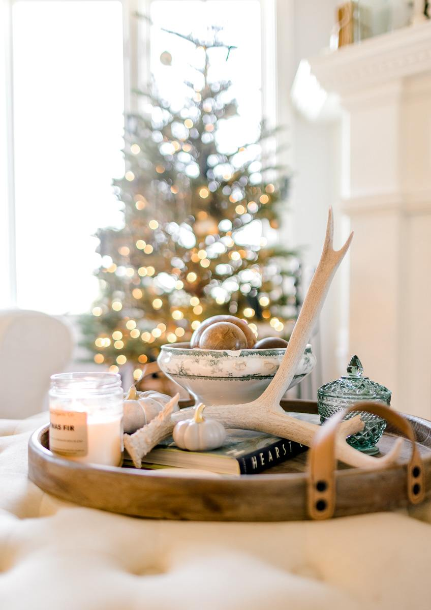 the-festive-farmhouse-blog-alli-aars-lifestyle-33.jpg