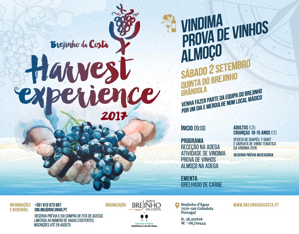 Harvest event flyer. Photo Courtesy of Brejinho da Costa