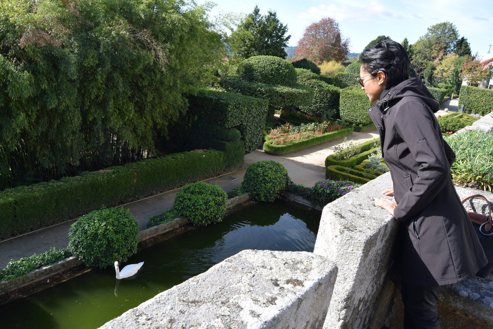Sheree M. Mitchell Making eye-contact with the resident swan who lives in the gardens of  Casa de ínsua  in Penalva do Castelo, Portugal