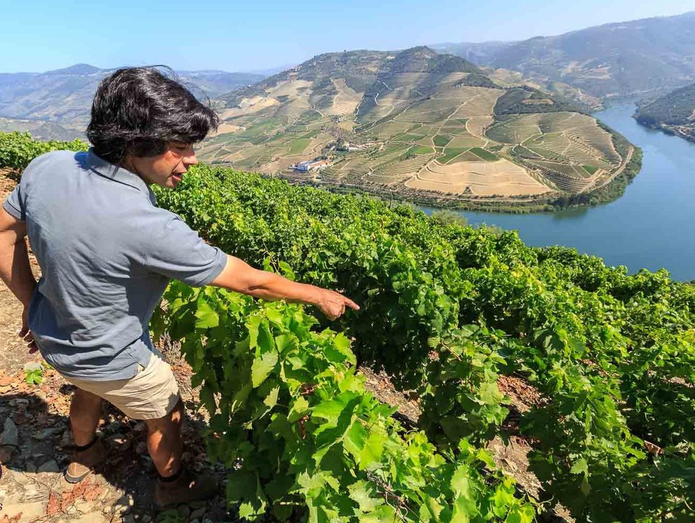 Exclusive Visits to the Douro Valley